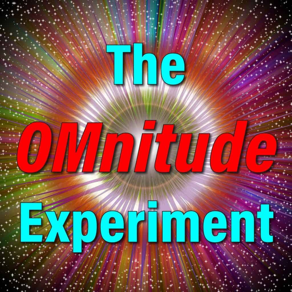The OMnitude Experiment